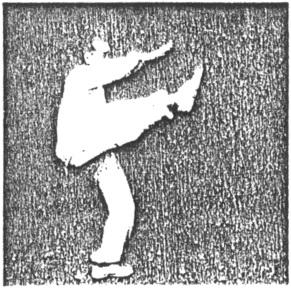 《太極拳》 尹千合 - posture 50
