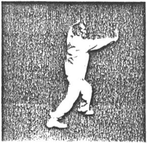 《太極拳》 尹千合 - posture 55